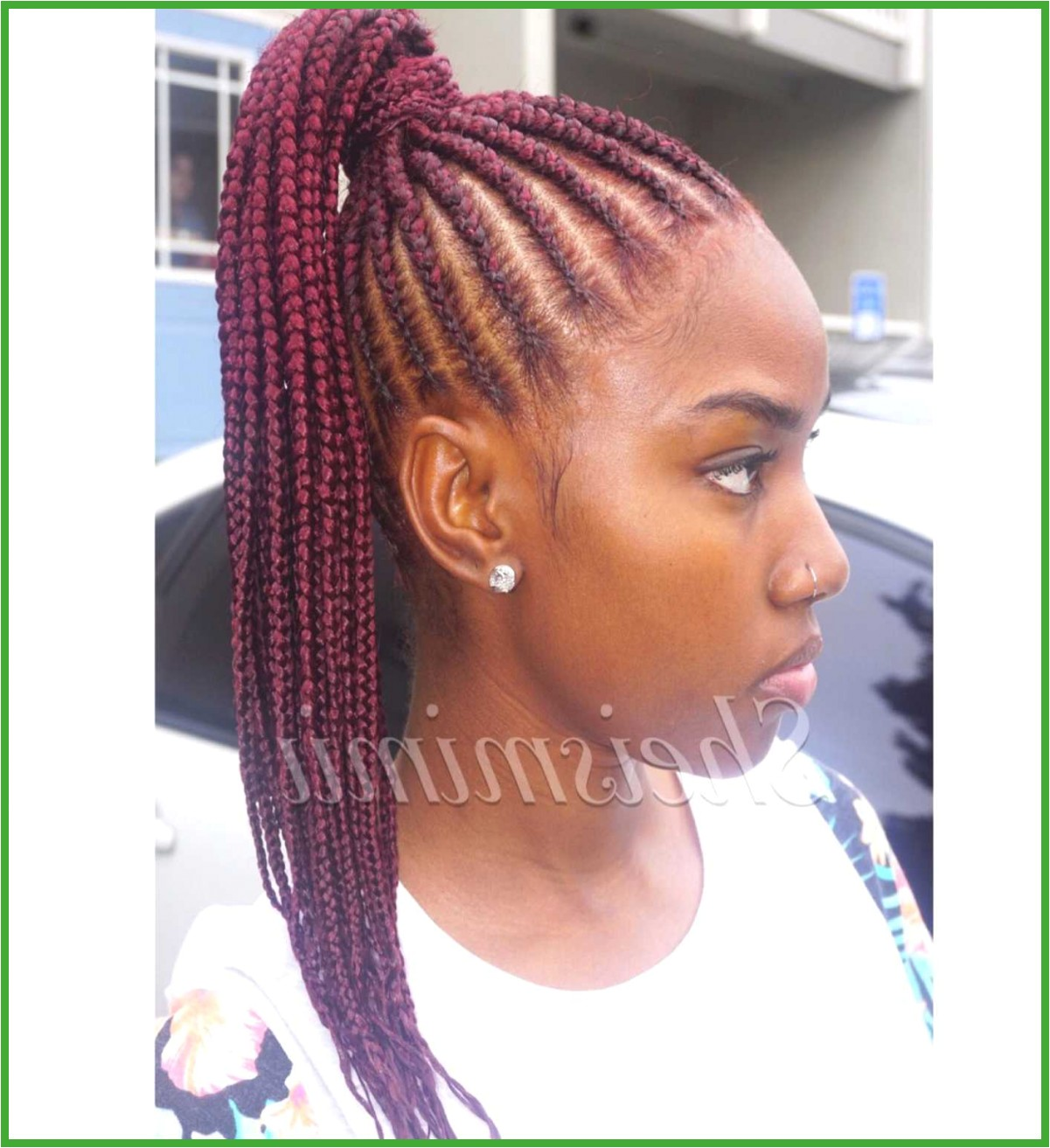 Hairstyles with Braids Best Big Braids Hairstyles Fresh Micro Hairstyles 0d Regrowhairproducts