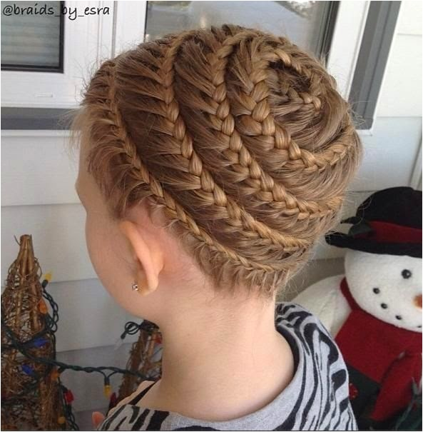 the spiral braid images and video