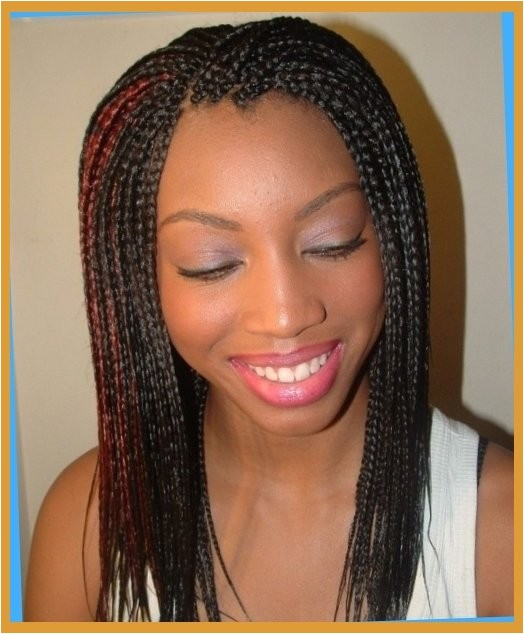 braided hairstyles for african americans long braided african regarding braided hairstyles african american hair intended for really encourage
