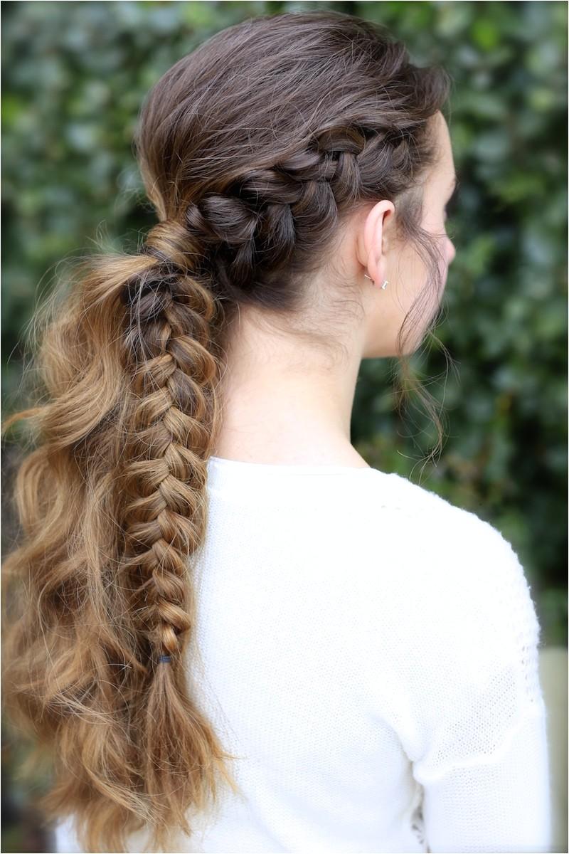 the viking braid ponytail