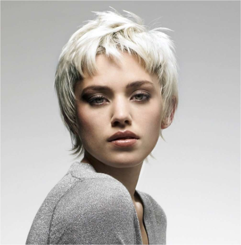 gray short hairstyles and haircuts for women 2017