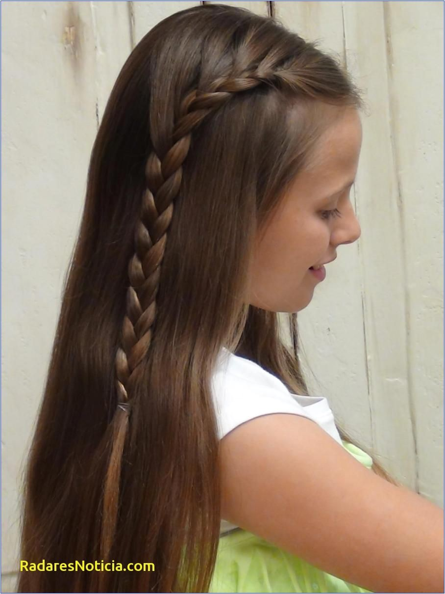 French Braid Hairstyles with Extensions Braided Hairstyles for Grey Hair Grey Hair Extensions as Regards