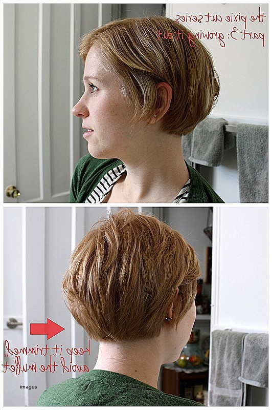 hairstyles for growing out bob