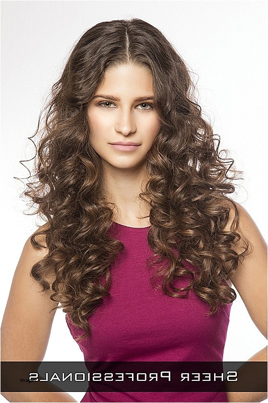 professional hairstyles for long curly hair