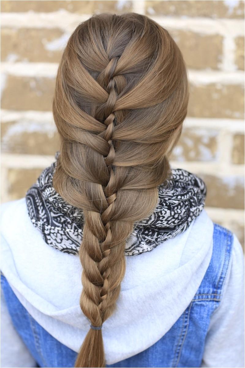 the twist braid