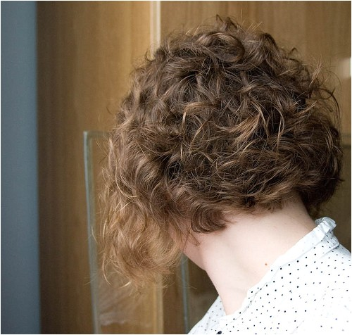 best curly inverted bob hairstyles