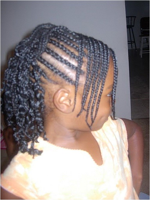 cute hairstyles with braids for little black girls