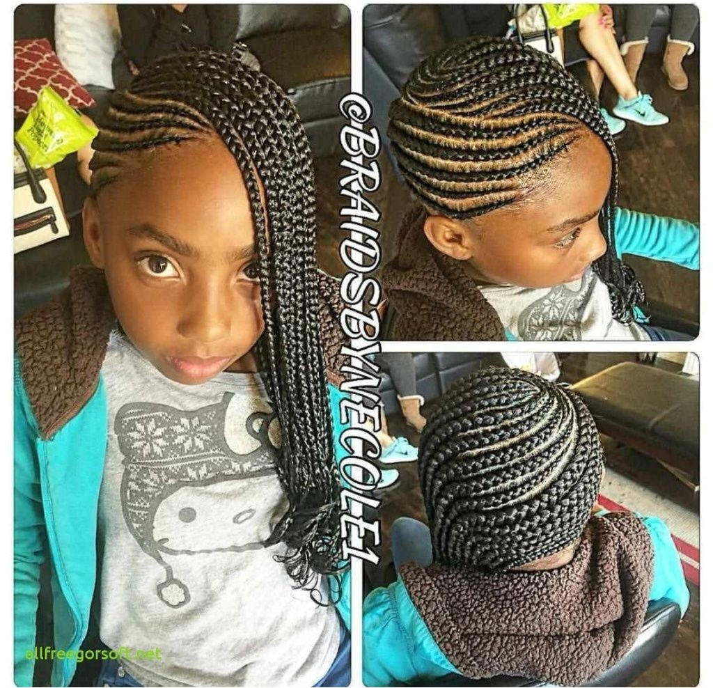 24 Unique Black Hairstyles With Braids Black Little Girl