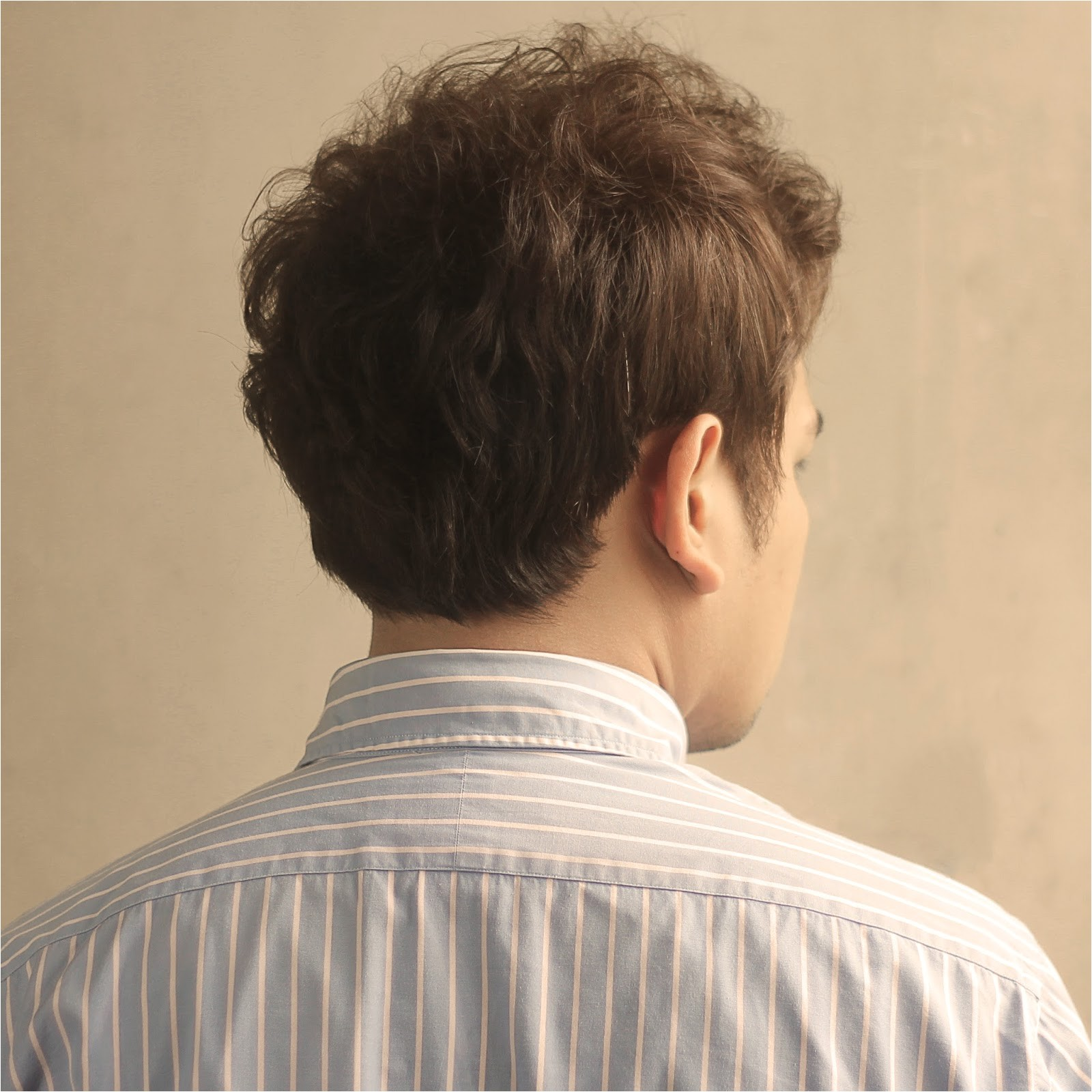 mens hairstyle for back of head