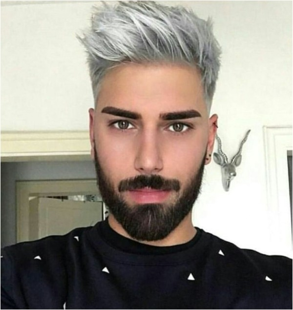 men mens hairstyles gray hair men long gray hairstyles short