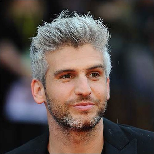 silver grey hair for men