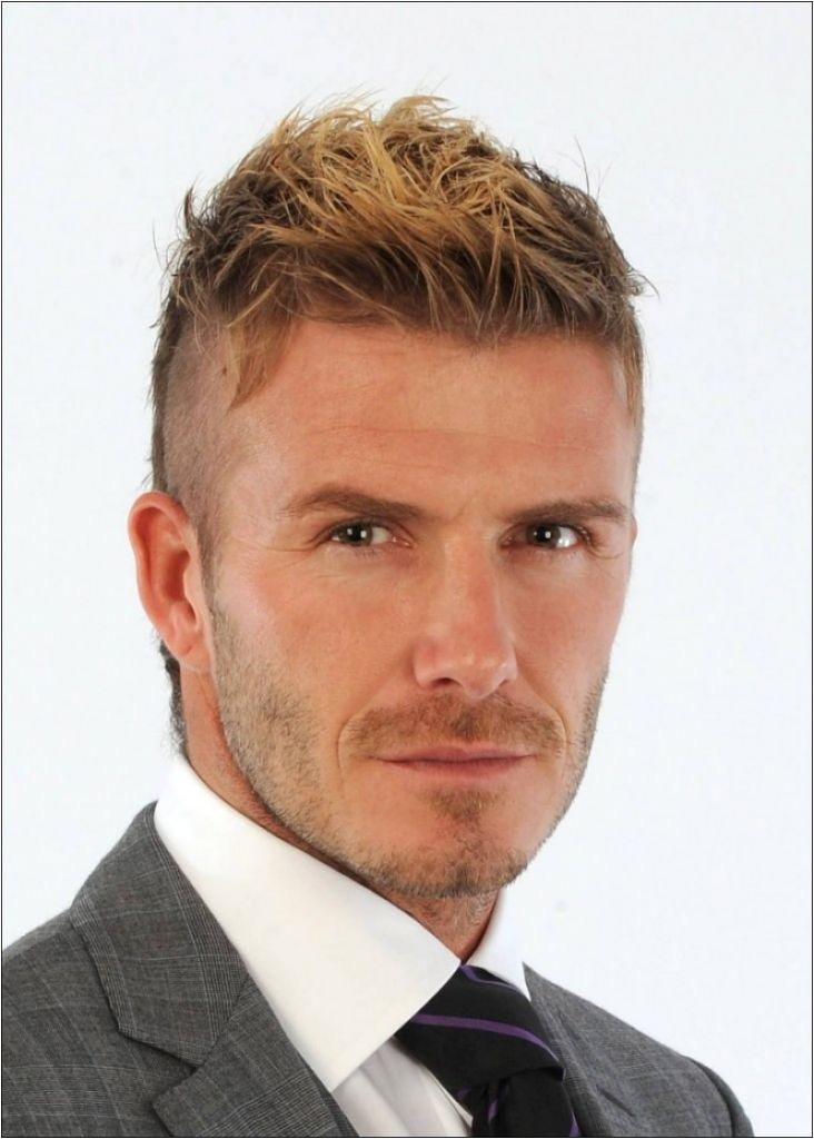 Mens Hairstyles for Thin Hair 2013 Mens Hairstyles for Fine Hair 2013
