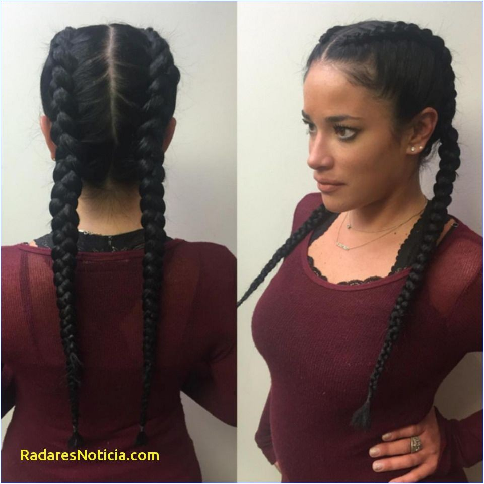 Black Hair Braids Styles Awesome 7 Best Two Braids Hairstyles 2018