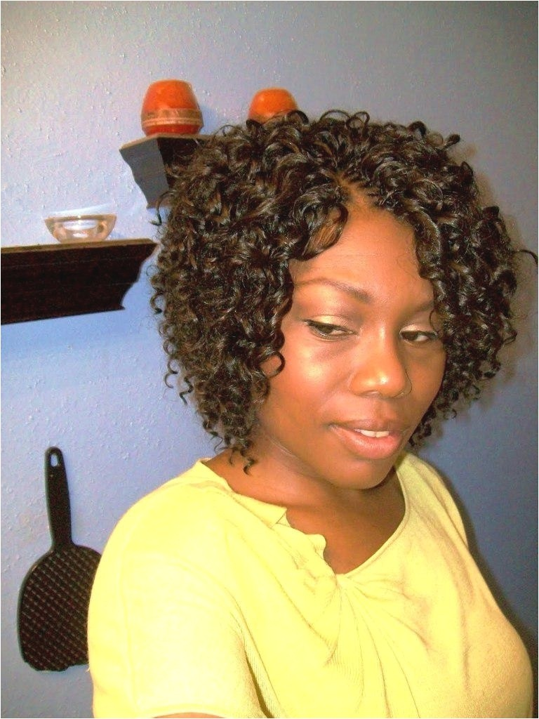 micro braids hairstyles updos pictures