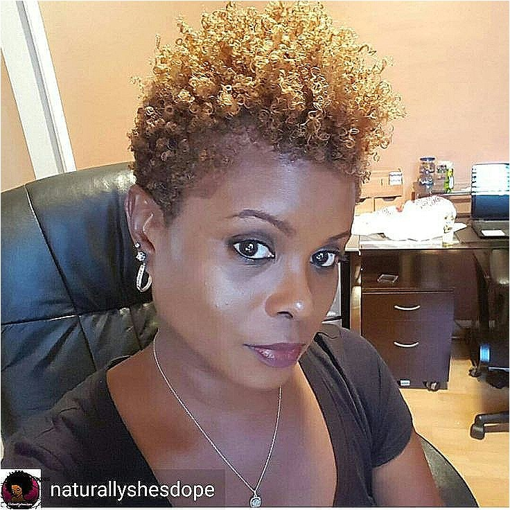 african american short natural hairstyles 2018 beautiful best 25 short natural haircuts ideas on pinterest
