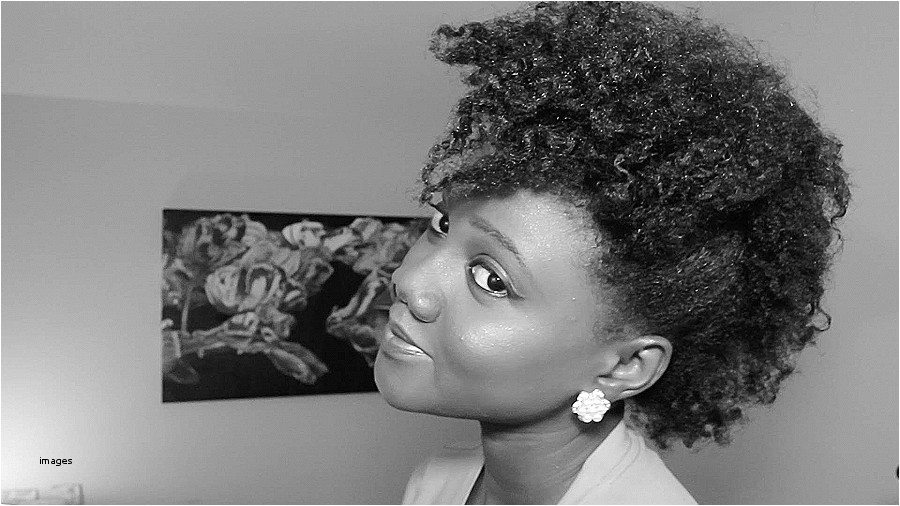 hairstyles for curly natural hair african american luxury black styles hairstyle fodo women and man