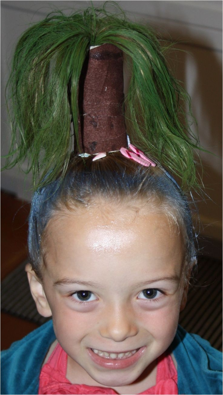 the amazing easy wacky hairstyles for