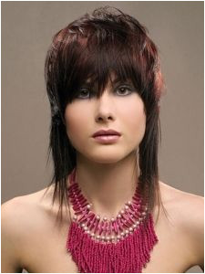 Image result for 70s feather cut hairstyles