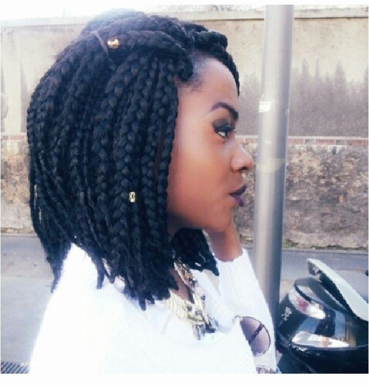 Braided Hairstyles For African American Girls Luxury Wonderful Fabulous Big Braids Hairstyles Best Micro Hairstyles 0d
