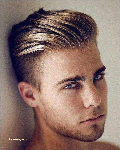 Chinese Haircut Style asian Hair Styles for Men Inspirational Chinese Hairstyle Male
