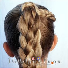 Pretty Hair is Fun How to do a Five 5 Strand Braid Video Tutorial