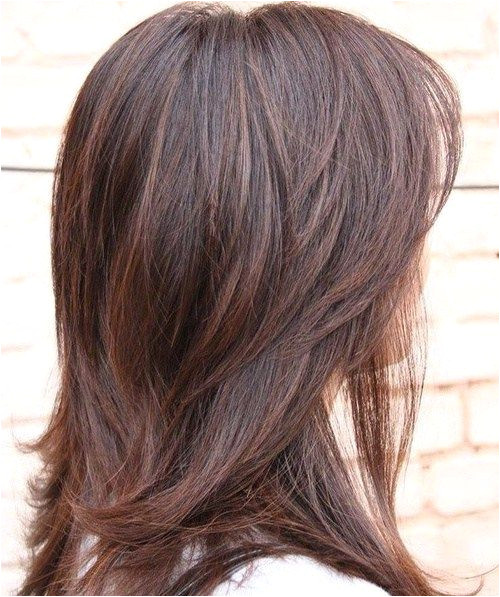 Layered Haircut For Thick Hair More
