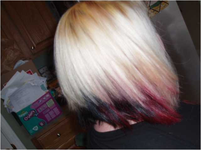 New Hairstyles for Blonde Hair Blonde Hair with Black Underneath Hairstyles I Pinimg 736x De C6