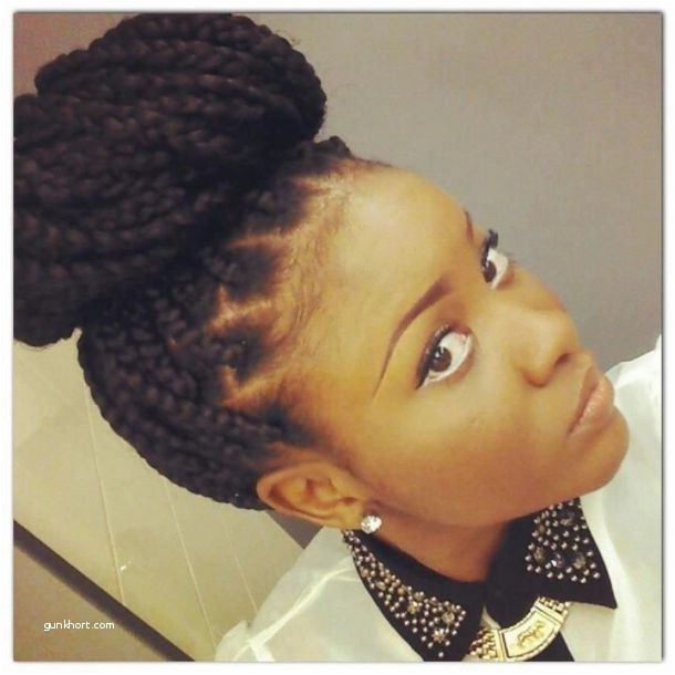 Curly Hair asian Elegant Ely Pics Braids Hairstyles Lovely Braided Mohawk Hairstyles 0d Curly Hair
