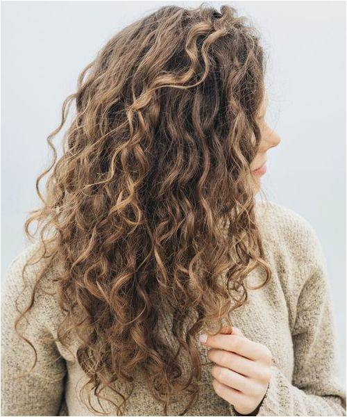 Hairstyles for Curly Hair for Office Best Long Curly Hairstyles 2018 to Make You Pretty and Stylish