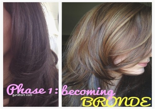 Brown Grey Hair Color Awesome Babylights Brown Hair Light Brown Hair Dye Awesome Appealing Od Dark