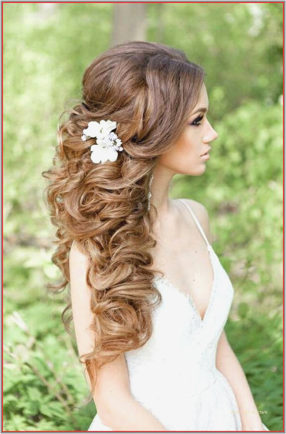 50 Luxury Hairstyles U Can Do with Curly Hair