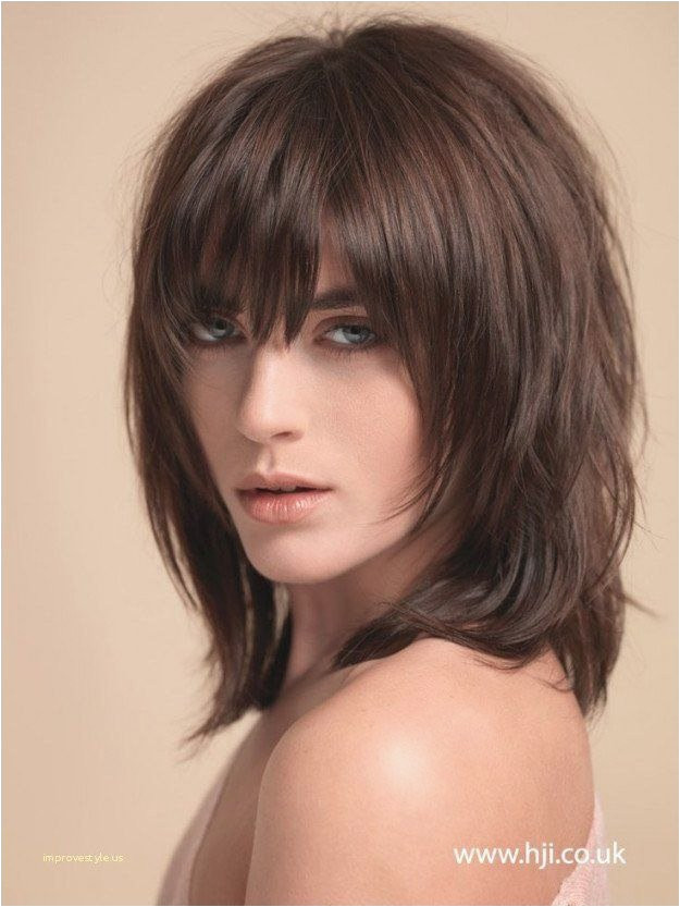 35 picture of hairstyles photo shaggy hairstyles 0d