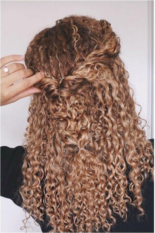 Curly hairstyles natural hair 3b 3c curls half updo braids