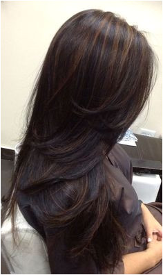 Indian Hairstyles Highlights 1454 Best Indian Hair Images