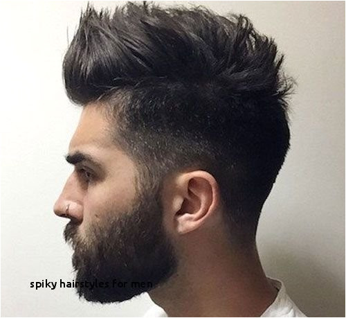 Famous Male Hair Stylists Elegant Spiky Hairstyles for Men Famous Hair Salon by Best Hairstyle Men