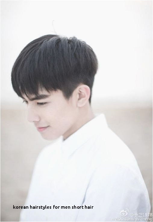 0d · Asian Man Hair Elegant 30 Korean Hairstyles For Men Short Hair