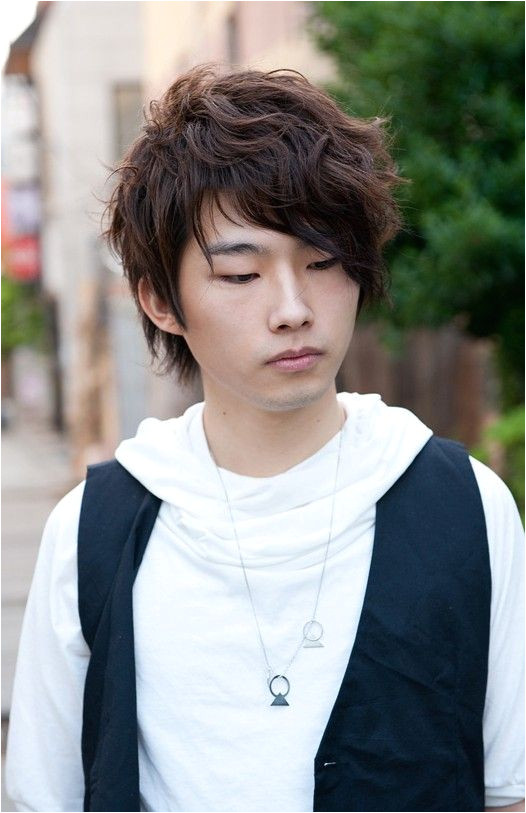Korean Male Curly Hairstyles Curly Korean Hair Style for Men