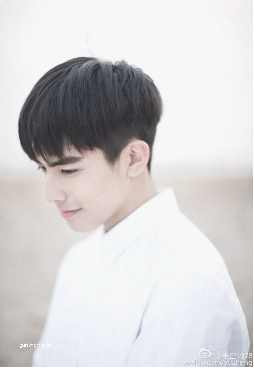 Best Haircut for asian Hair Awesome Ely Grey Hair Cutting In Respect Boys Korean Haircut Style