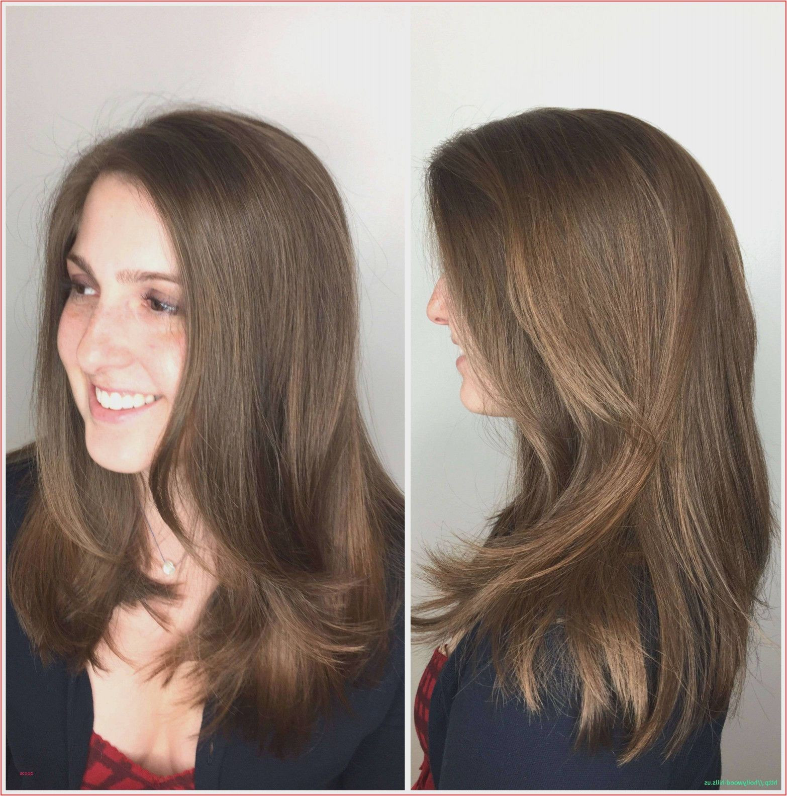 Hairstyles Name for Girls Best Hair Style Names Best Haircut Names All Hairstyle Names