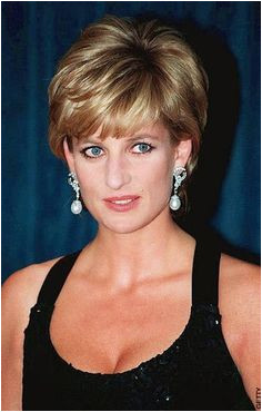 December 11 1995 Diana Patron The Foundation for Conductive Education attended the United Cerebral Palsy of New York s Annual Dinner at the Hilton Hotel