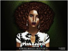 blahberry Afro HairstylesBlack HairstylesSims