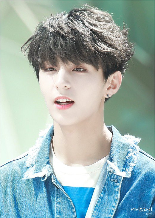 2019 Korean Male Hairstyle Latest Trendy asian and Korean Hairstyles for Men 2019