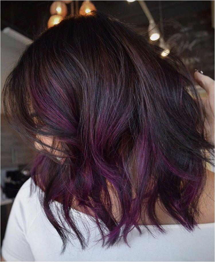Purple ends Purple ends Purple Hair Highlights Black