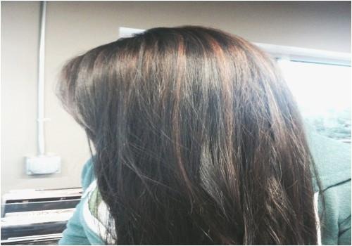 Hair Highlights for Light Brown Hair Cute Hair Highlights Color Elegant I Pinimg 1200x 0d 60