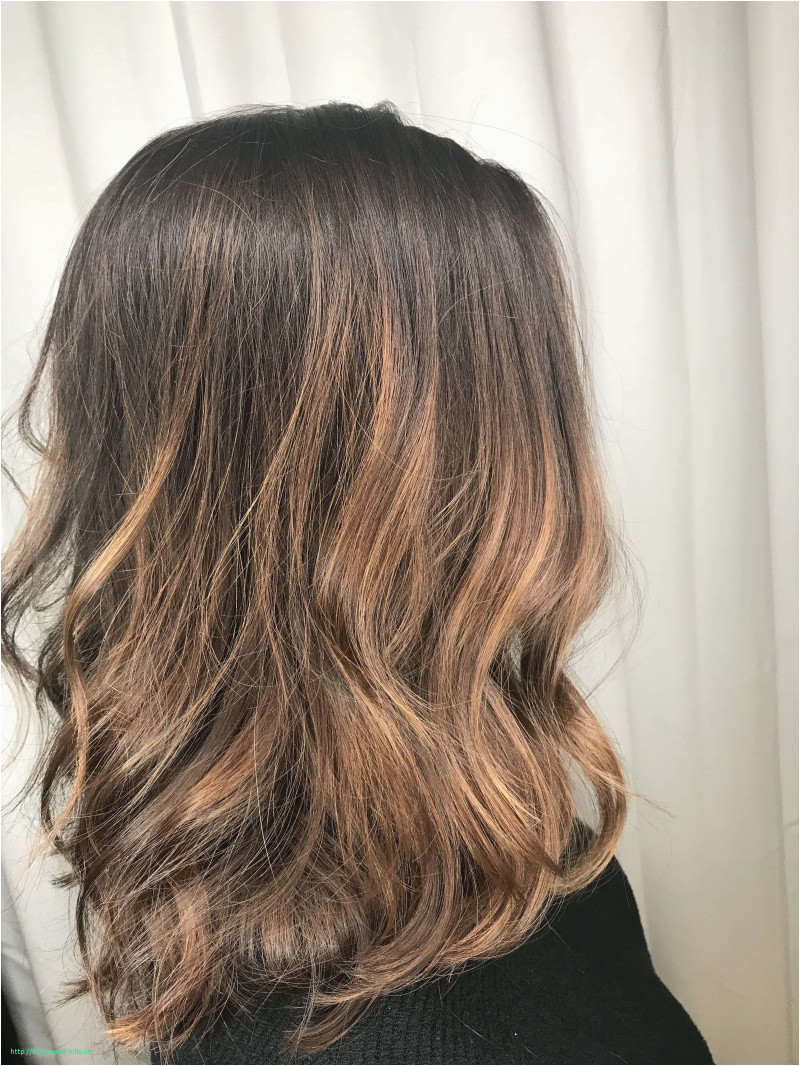 Seventimesbrighter Cute Hairstyles Step by Step Luxury Cute Hair Highlights for Brunettes Inspirational I Pinimg 1200x