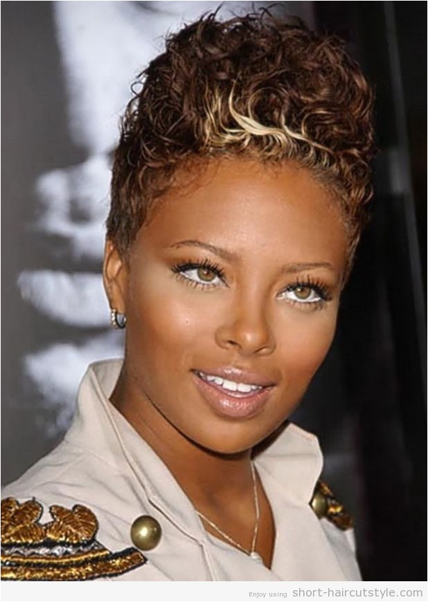 5 Fabulous Hairstyles For African American Hair Short Hair Style Pinterest