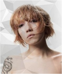 Hair Cutting Zone 70 Best Creative Haircut Tutorials On Myhairdressers Images