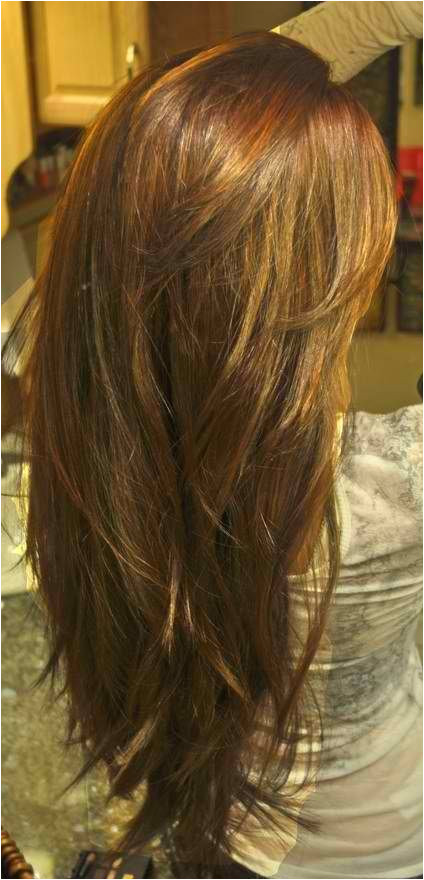 Long hair Increased Layer Form with shorter face framing fringe in the front An all over level 6 color with level 4 highlights Align 12 for straightening