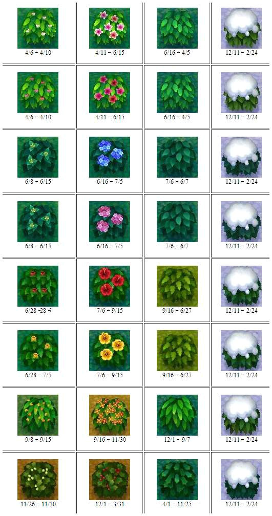 acnl flower guide
