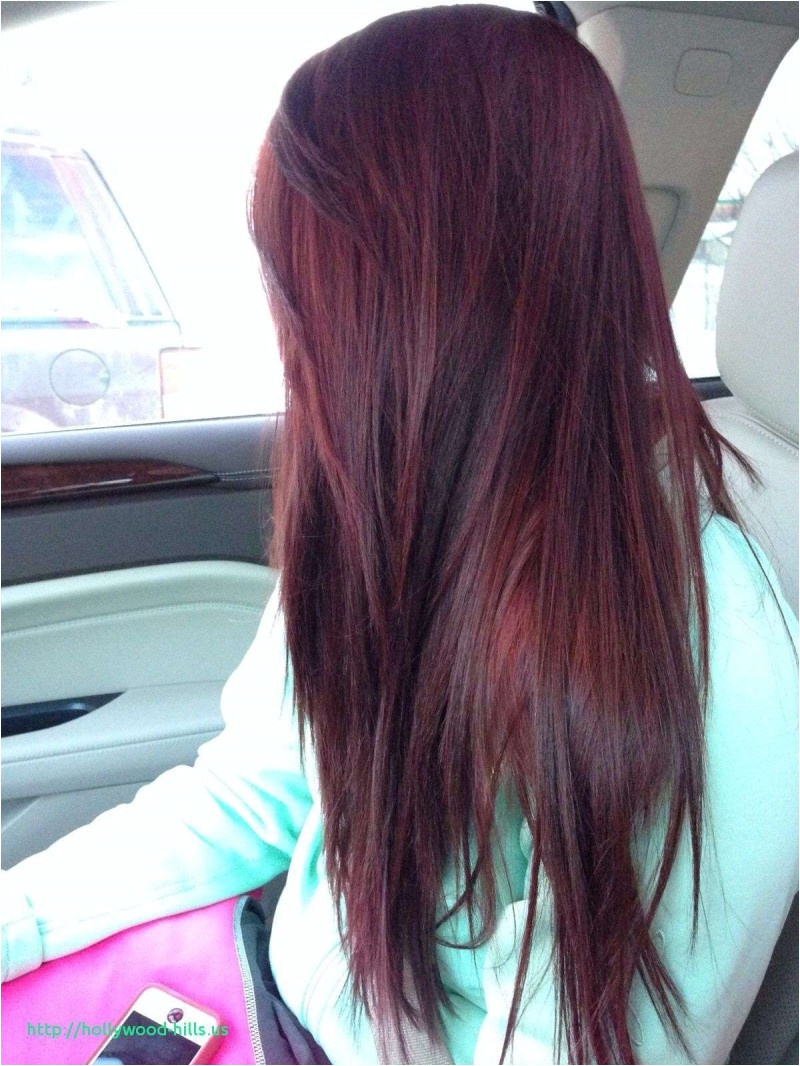 Hairstyles Black with Red Highlights Gorgeous Black Purple Hairstyles